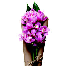 Orchid Bouquet Orchid Bouquets Delivery In Kuala Lumpur Malaysia Blooming