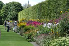 The Royal Botanic Gardens Royal Botanic Garden Edinburgh Edinburgh Parks Visitscotland