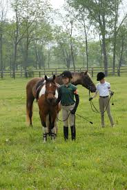why horses are great for kids elcr