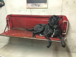 big dog ernie on ford tailgate bench diy home decor pinterest