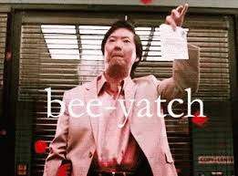 Mr Chow Meme - mr chow gifs search find make share gfycat gifs