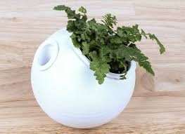 Self Watering Planters 3d Self Watering Planter For Modernist Aesthetics Homecrux