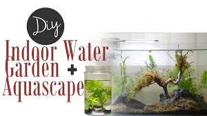 diy indoor water garden youtube