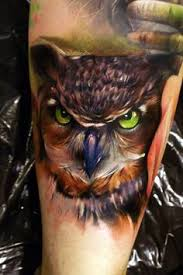 pin by bobby yif on owl