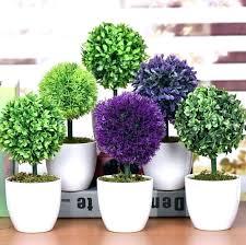 plants for office desk plants for office desk office desk plants artificial succulents