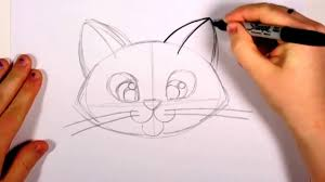 how to draw a cute kitten face tabby cat face drawing art for