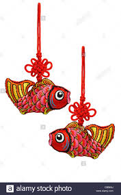 new year prosperity fish ornaments on white background