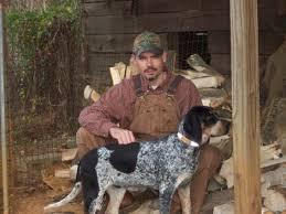 bluetick coonhound in michigan bluetick coonhound coonhounds www bluetick1kennels com blueticks