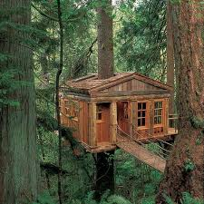 cool tree house awesome tree houses landscaping backyards ideas