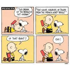 Charlie Brown Memes - coolest 25 charlie brown memes wallpaper site wallpaper site