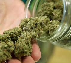 canadians get clearance to grow marijuana at home