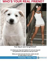 Dog Girlfriend Meme - e who s your real friend your dog or your hot girlfriend it s