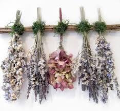 Drying Flowers In Books - best 25 dried flowers ideas on pinterest wedding dried flowers