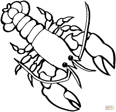 lobster 2 coloring page free printable coloring pages