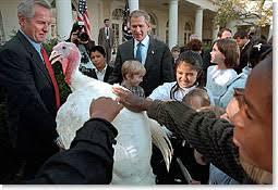 thanksgiving turkey receives pardon