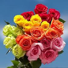 global roses globalrose specials global