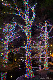 Sparkle Christmas Lights by 97 Best Twig Trees U0026 Lights Images On Pinterest Christmas Ideas