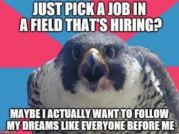 Falcons Memes - falcons meme and memes