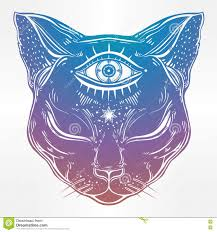 black cat head portrait with moon and three eyes stock vector