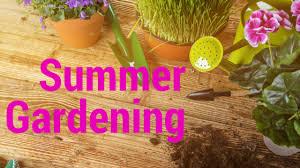 Summer Gardening - gardening articles bloomtown tv
