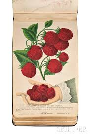 fruits flowers the specimen book of fruits flowers and ornamental trees
