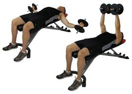Chest Workout Dumbbells No Bench Best Chest Fly Exercise Dumbbell Flys Vs Cable Flys