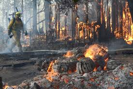 Wildfire Weed by California Wildfire Threatens Homes Photos Image 1 Abc News
