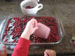 thanksgiving cranberry science activities great information on