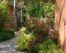 creating beautiful backyard landscaping inspired by oriental