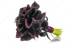 black calla black calla lilies wedding bouquet stock photo nanka photo