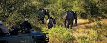 safari african safari packages choose from 340 africa safari tours