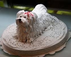birthday cake of a white cute small dog what a great dog birthday