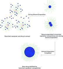unimolecular branched block copolymer nanoparticles in methanol