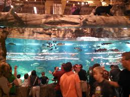 bassproshop black friday bass pro shops pyramid over the top in memphis chicago sun times