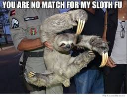 Sloth Meme - you are no match for my sloth fu funny sloth memes pictures
