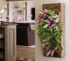 Wall Planters Indoor by Grovert Wall Planter Walnut Frame Kit Living Wall Planter