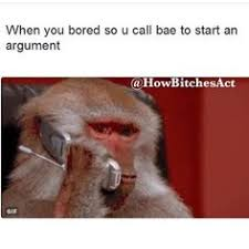 Baboon Meme - getty images baboons meme gifs and memes
