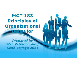 one organization chapter one introduction to organization