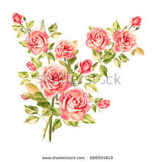 vintage bouquet watercolor pink roses vintage bouquet roses stock illustration