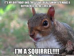 Squirrel Meme - image jpg