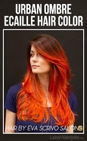 ecaille hair 17 best ideas about ecaille hair on pinterest tortoiseshell hair