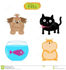 catdog vector pets illustration cute set white background cat dog fish