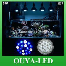 aquarium light bulb replacement aquarium light bulb tushargupta me