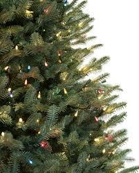 best treel ideas on small trees