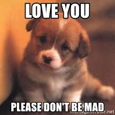 Dont Be Mad Meme - love you please don t be mad cute puppy meme generator
