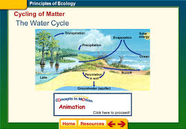 Click On A Lesson Name To Select The Principles Of Ecology