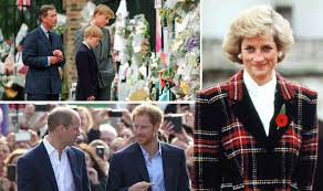 prince william and harry to honour princess diana with national