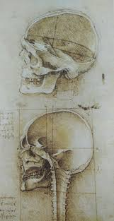 leonardo da vinci on portrait drawing anatomy master class
