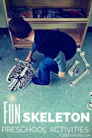 Skeleton Bones For Halloween by Top 25 Best Human Skeleton For Kids Ideas On Pinterest Human