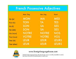 all worksheets possessive adjectives in french worksheets